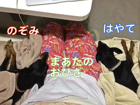 20140824-3.png