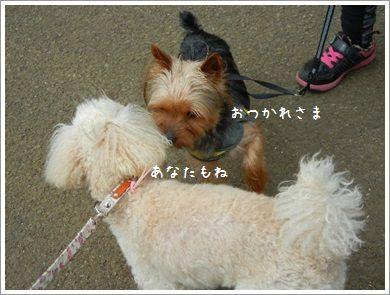 DSCN5746_2014.jpg