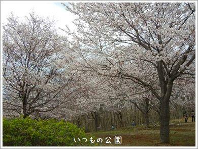 DSCN5755_2014.jpg