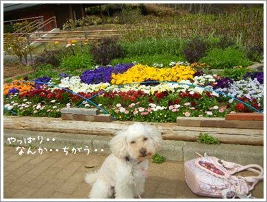 DSCN5762_2014.jpg