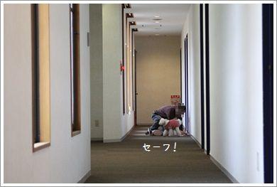 IMG_5587.jpg