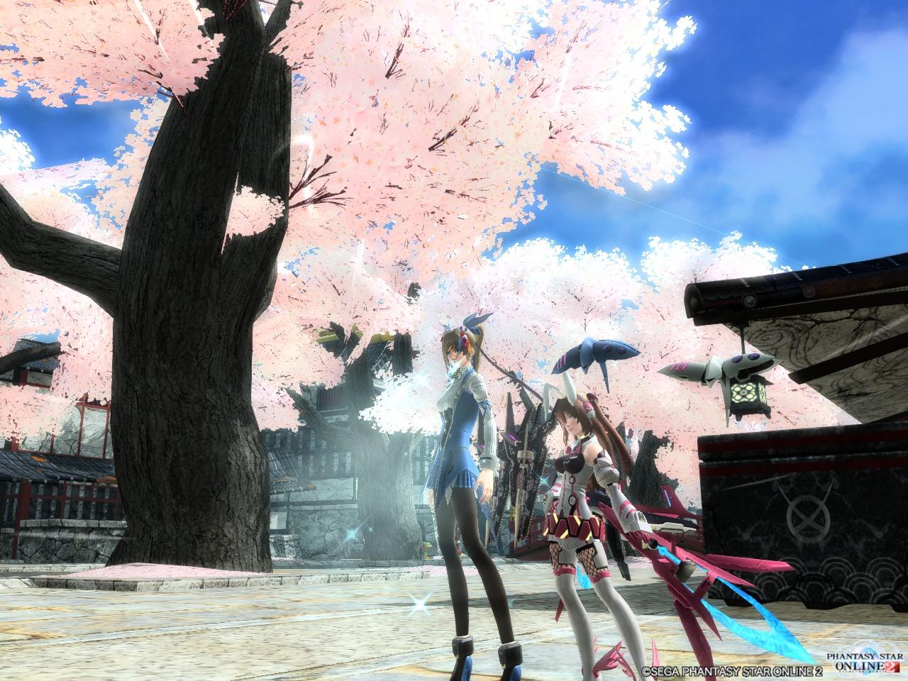 奈々ちゃんと桜の木の下で