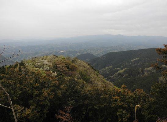 展望台からの天城方面の山々