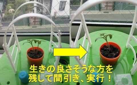 blog2064.jpg