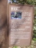 20140502忍野八海御釜池2