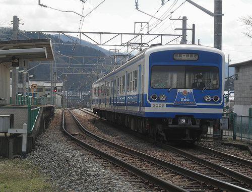 伊豆箱根鉄道3000系(第5編成)(2014年3月8日・牧之郷駅)
