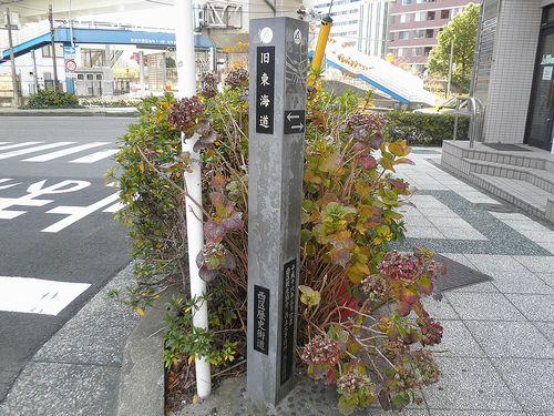 横浜市西区楠町・旧東海道(2011年12月25日)