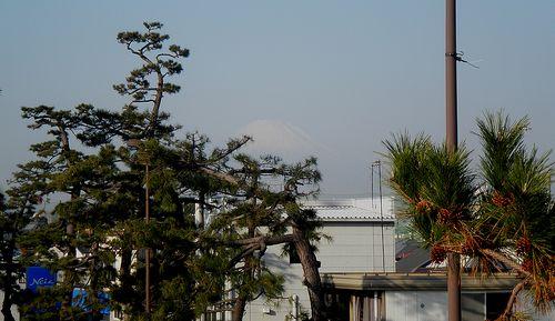 茅ヶ崎市本村2丁目・国道1号線歩道橋から見た富士山(2011年12月29日)
