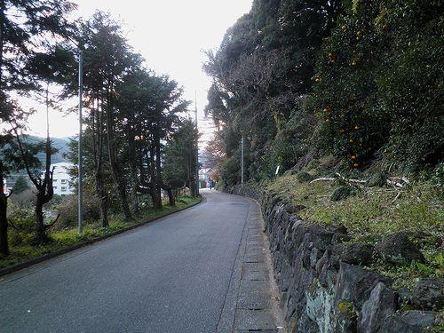旧東海道・小田原市風祭(2011年12月31日)2