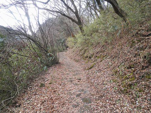 旧東海道・箱根東坂・西海子坂(神奈川県足柄下郡箱根町)(2012年1月8日)