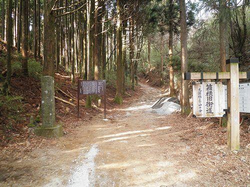 旧東海道・箱根東坂・白水坂(神奈川県足柄下郡箱根町)(2012年1月8日)
