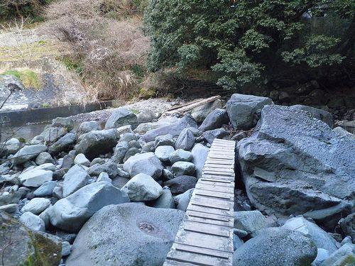 須雲川自然探勝歩道(神奈川県足柄下郡箱根町)(2012年1月8日)2