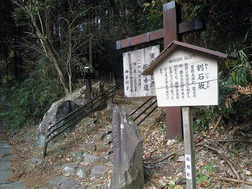 須雲川自然探勝歩道(神奈川県足柄下郡箱根町)(2012年1月8日)3