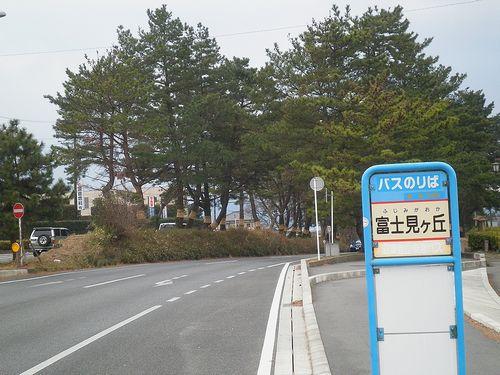 旧東海道・国道1号線富士見ヶ丘・松並木(静岡県三島市三恵台)(2012年1月28日)