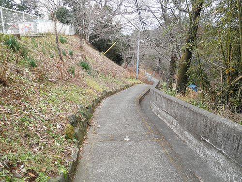 旧東海道箱根宿→三島宿間、題目坂(静岡県三島市市山新田)(2012年1月28日)2