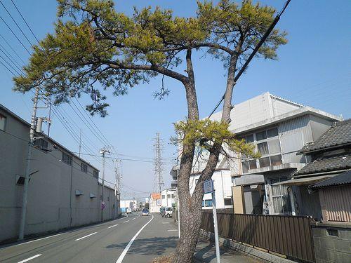 旧東海道(富士市依田橋)(2012年2月22日)
