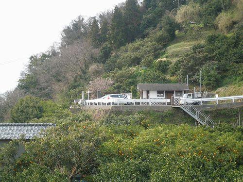 薩埵峠展望台(静岡市清水区由比西倉沢)(2014年3月9日)