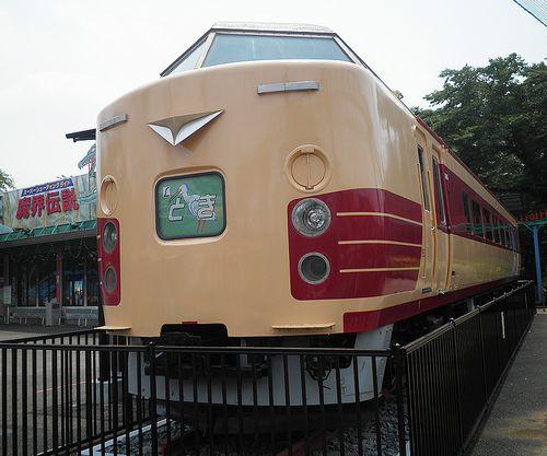 クハ183-1529(群馬県伊勢崎市・華蔵寺公園遊園地)(2014年6月20日)2