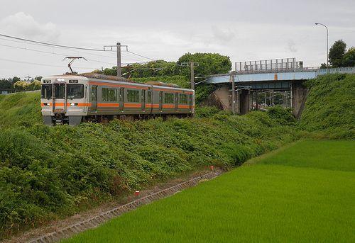 海シン313系1300番代(2014年6月28日・河曲~加佐登間)1