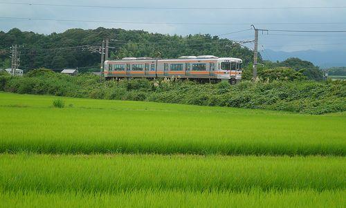 海シン313系1300番代(2014年6月28日・河曲~加佐登間)2