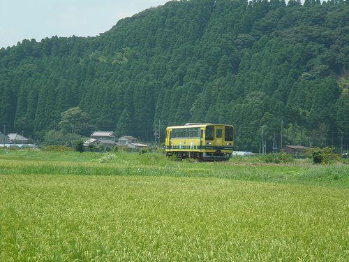 いすみ鉄道いすみ202(2014年7月29日・西大原~上総東間)