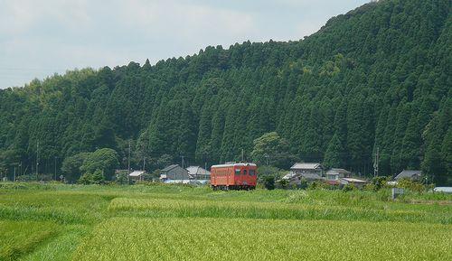 いすみ鉄道キハ52 125(2014年7月29日・西大原~上総東間)1