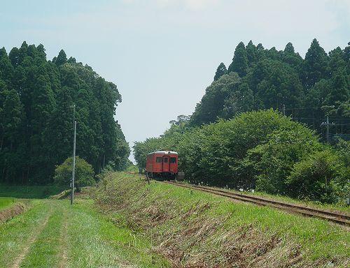 いすみ鉄道キハ52 125(2014年7月29日・上総東~新田野間)1