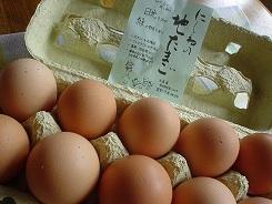 自然養鶏玉子 H26.7.30