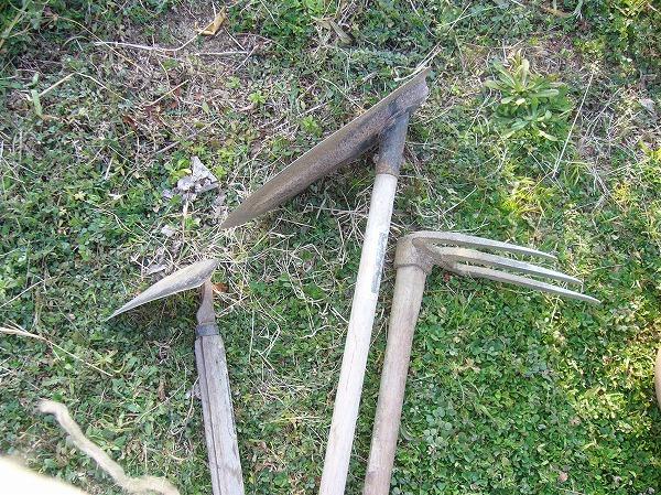 ミツゴと鍬と草削り26.2.24