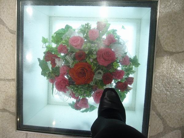 通路の下にもお花(福山) 26.3.7