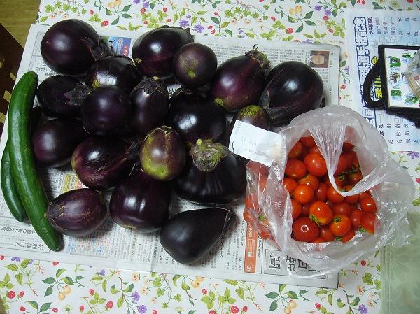 ナスと手紙付きのミニトマト 26.7.31
