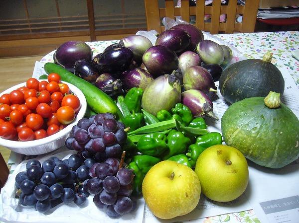 COOPの時いただく野菜 26.8.20