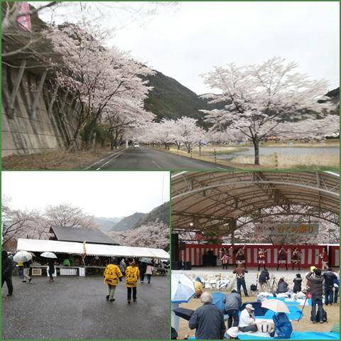 sakuramaturi_convert_20140409215906.jpg