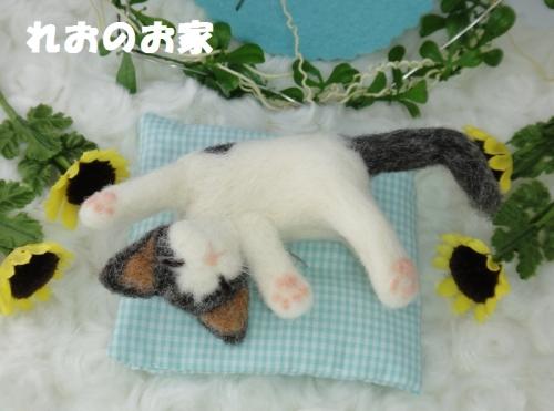 おねんねぶち猫1