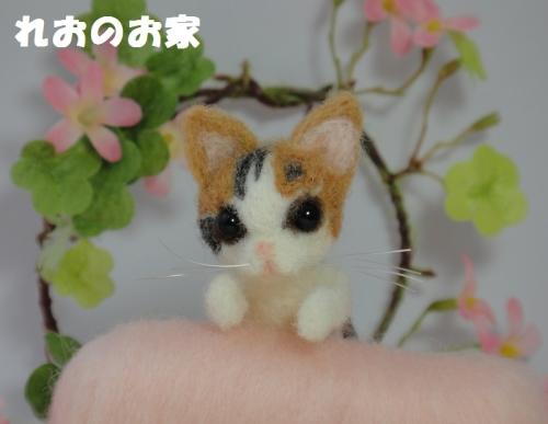 ソファ三毛猫4