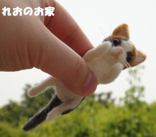 ソファ三毛猫5