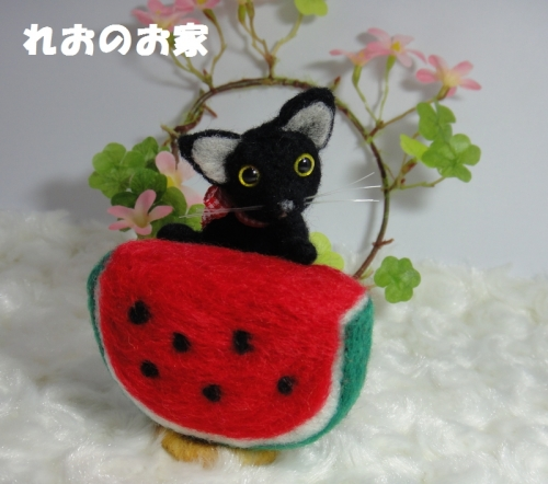 すいか黒猫1