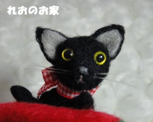 すいか黒猫4