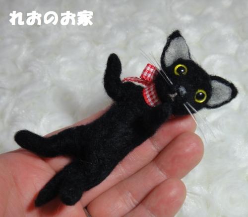 すいか黒猫5