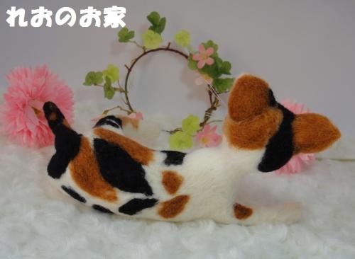 大きな三毛猫3