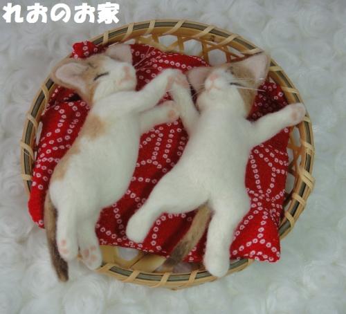 ねんね子猫1