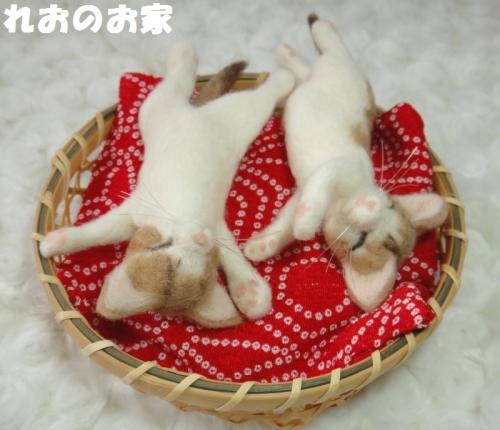 ねんね子猫2