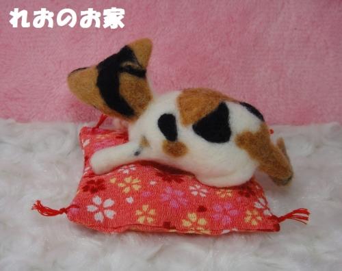 かご三毛猫3