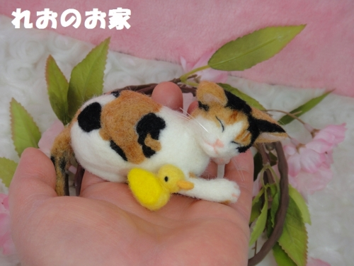 かご三毛猫5