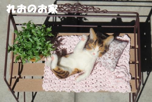 ねんねまねき猫1