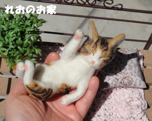 ねんねまねき猫5