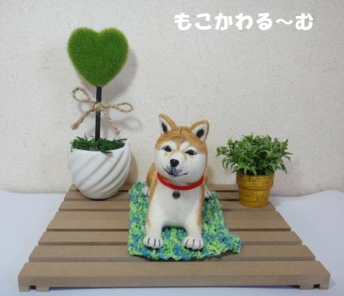 茶柴ふせポーズ1