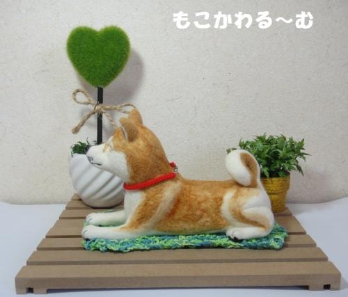 茶柴ふせポーズ3