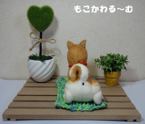 茶柴ふせポーズ4