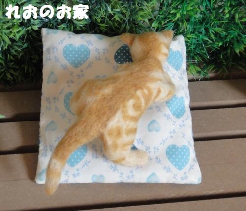 茶トラ子猫3